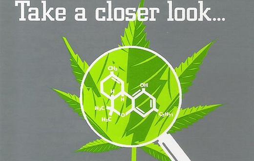a closer look at medical marijuana
